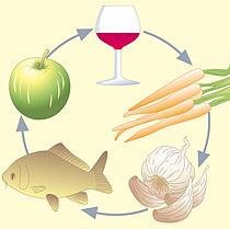 Fünf  Elemente Ernährung in der TCM